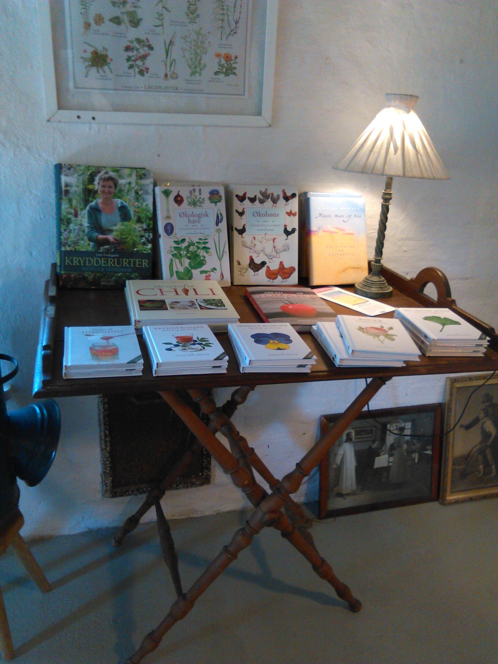 Bord med bøger