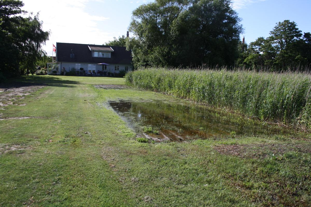 Græsplæne ned mod vandet