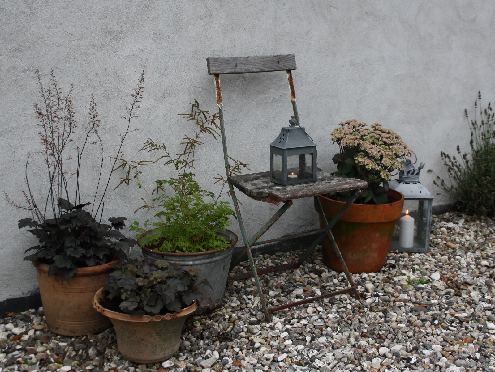 Gårdplads med planter