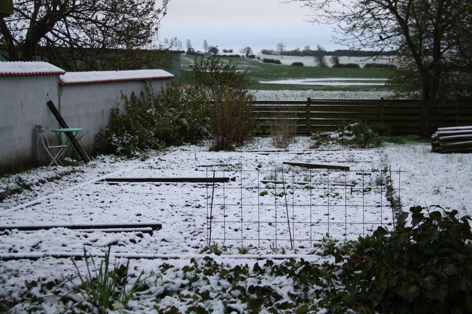 Køkkenhave med sne