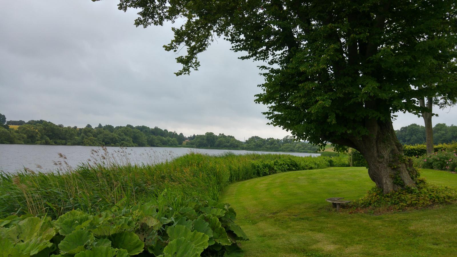 Haven ned til søen