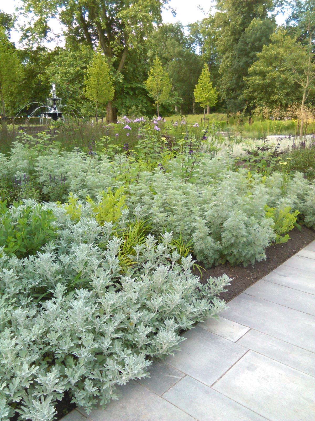Stadsparken i Lund grå og lime planter